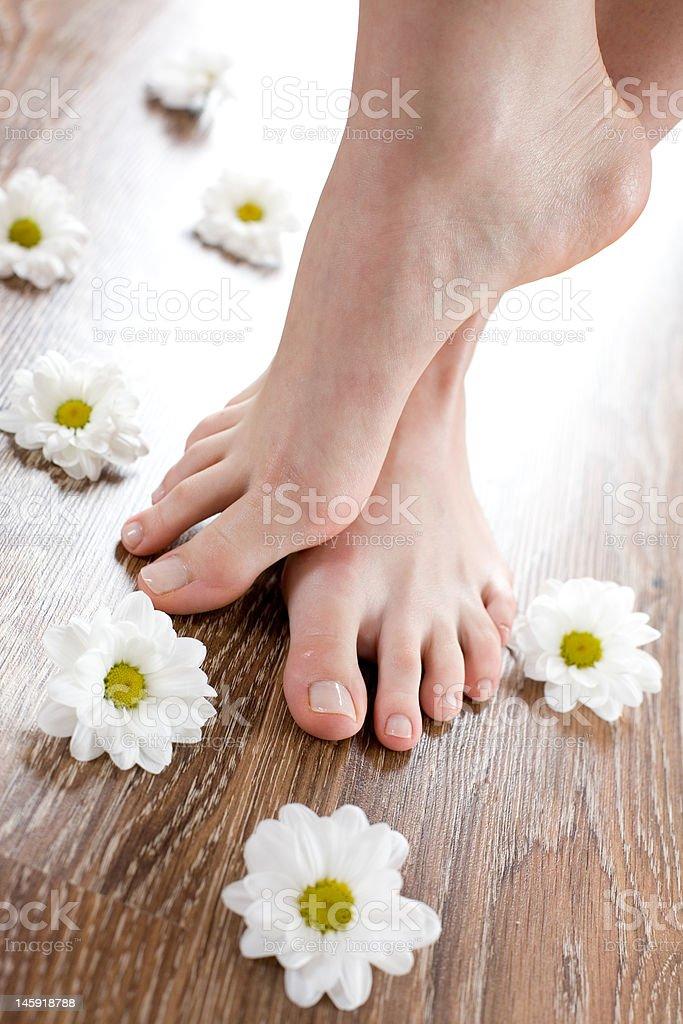 Female feet on the dark floorboard royalty-free stock photo