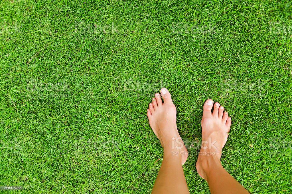 Female feet on the grass stock photo