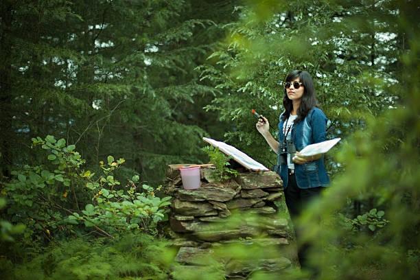 female fine artist making on location watercolor painting. - waldmalerei stock-fotos und bilder