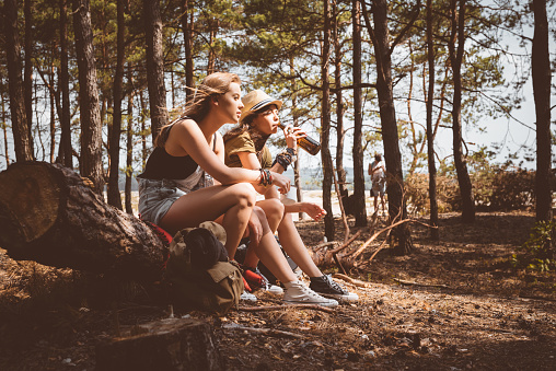 Female Friends Having Picnic In The Forest Stock Photo - Download Image Now