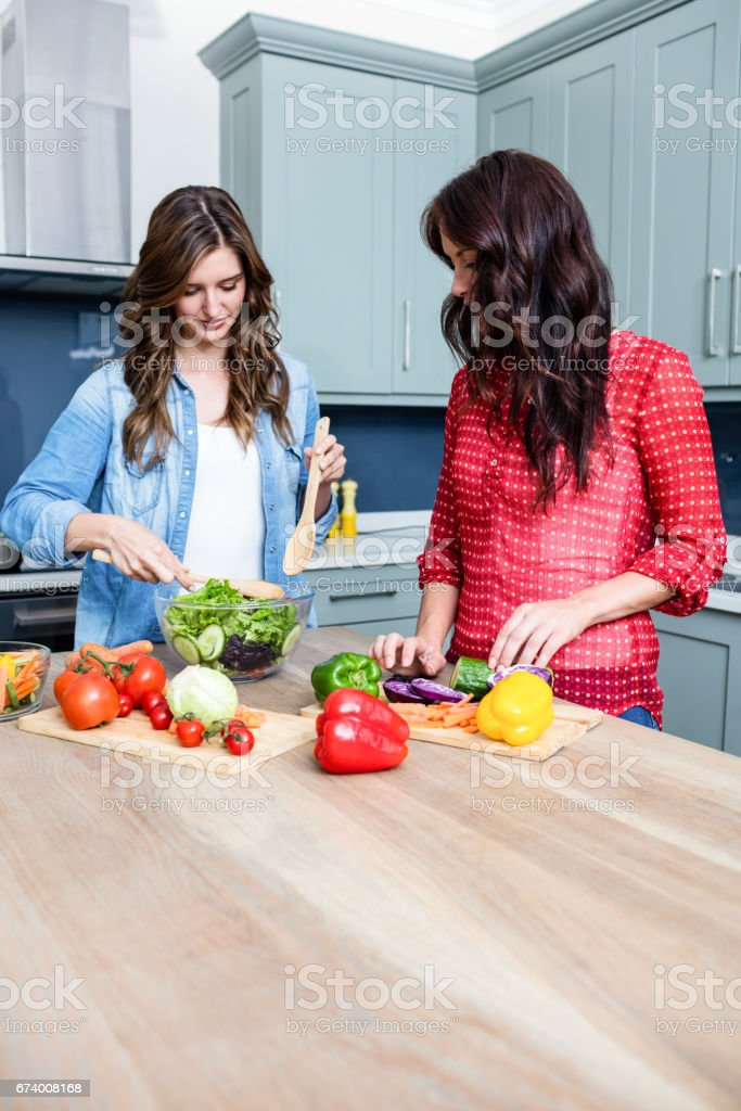 Female friends preparing vegetable salad royalty-free stock photo