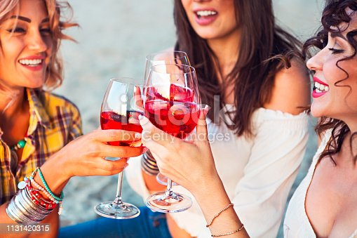 Happy female friends with glass of rose wine on summer beach picnic