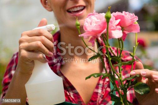 927641110 istock photo Female gardener in market garden or nursery 158253613