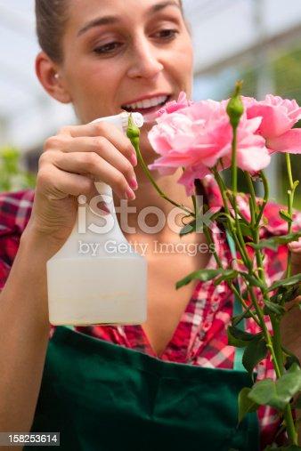 927641110 istock photo Female gardener in market garden or nursery 158253614