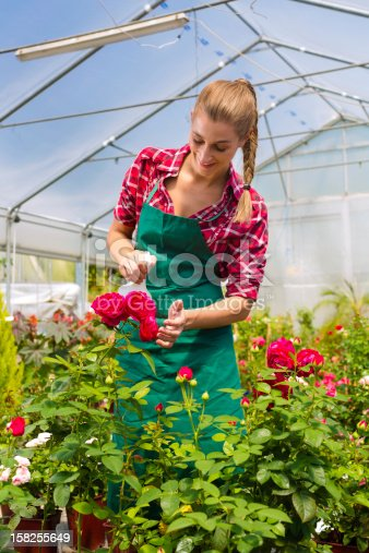 927641110 istock photo Female gardener in market garden or nursery 158255649