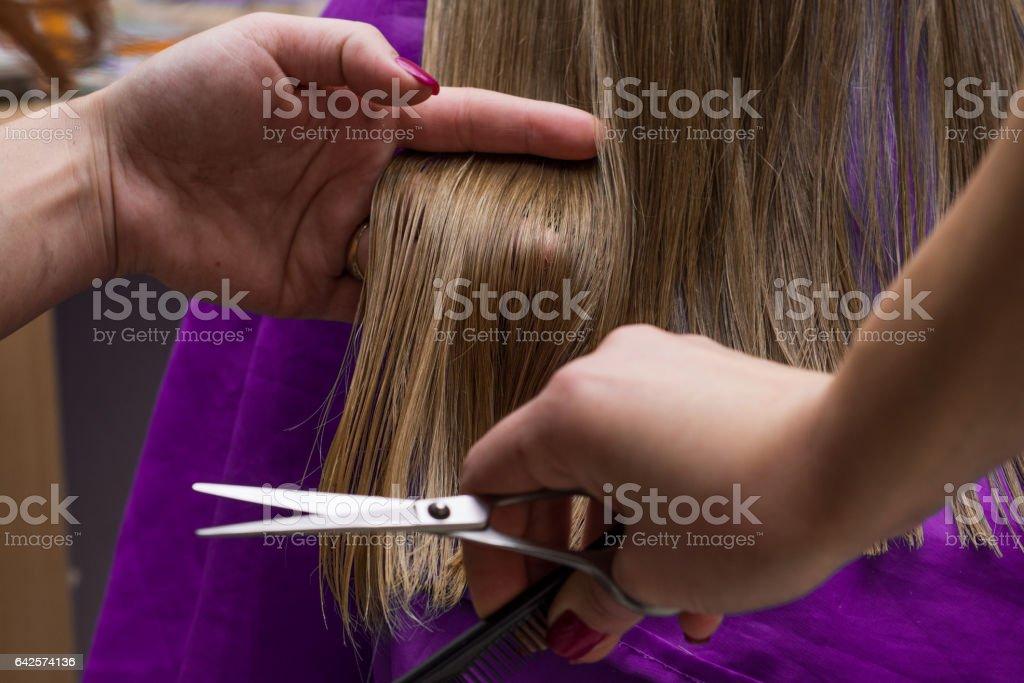 Female hair cutting scissors in a beauty salon stock photo