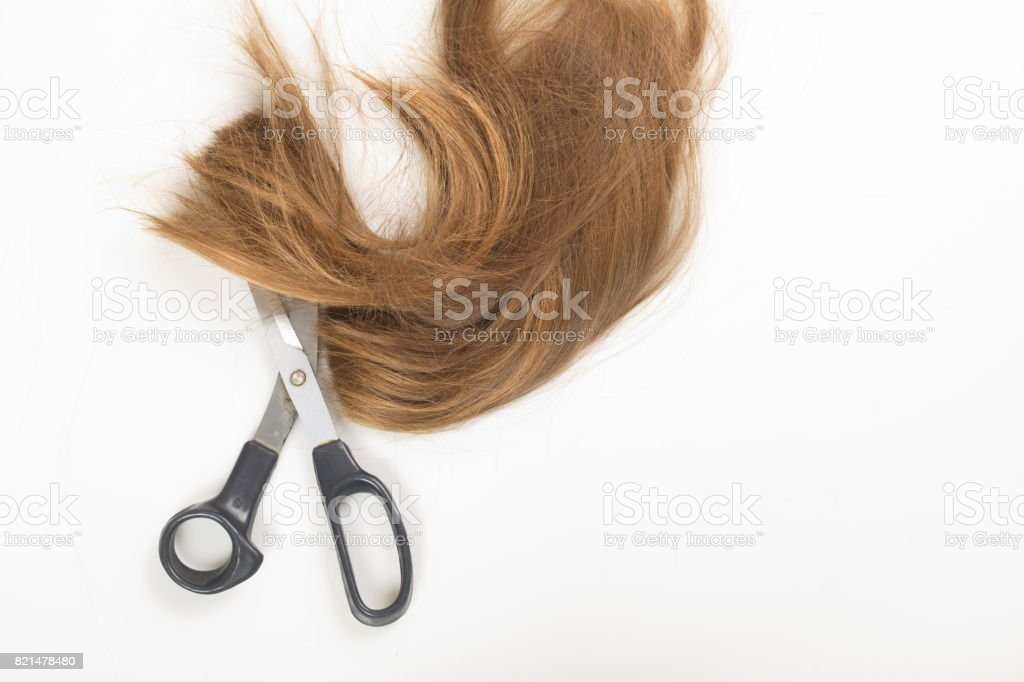 Female hair tail stock photo