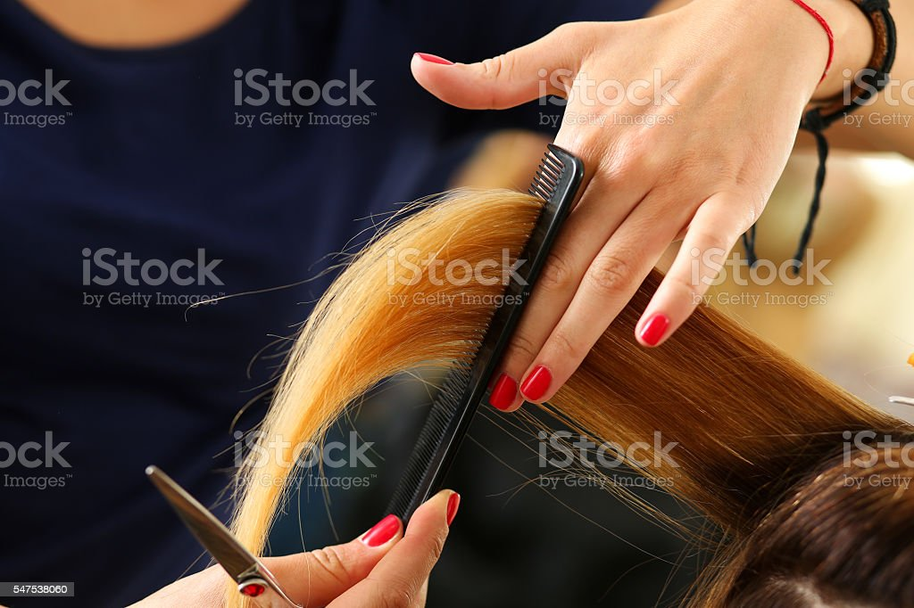 Female hairdresser hold in hand lock of blonde hair ストックフォト