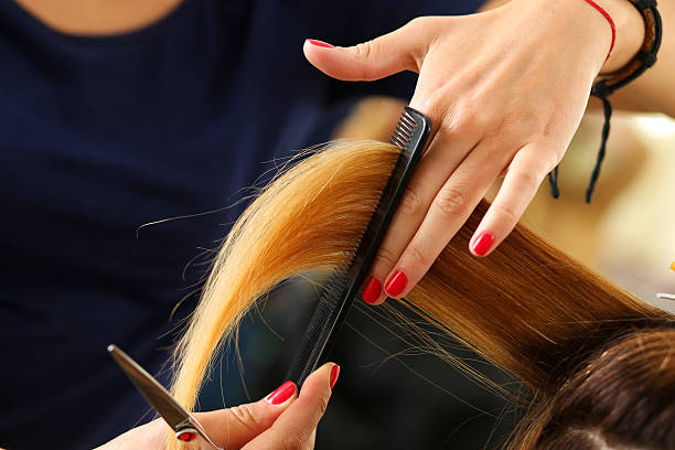 Female hairdresser hold in hand lock of blonde hair stock photo
