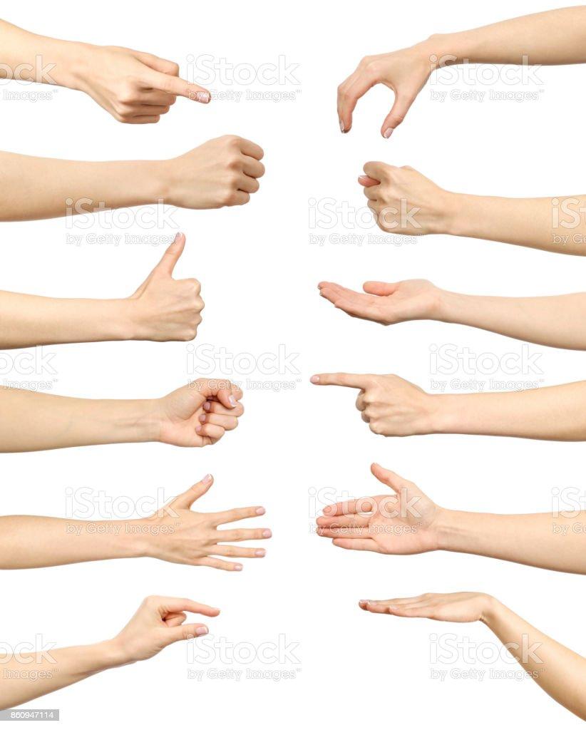 Weibliche Hand Gesten Und Zeichen Sammlung Isoliert Auf Weißem ...