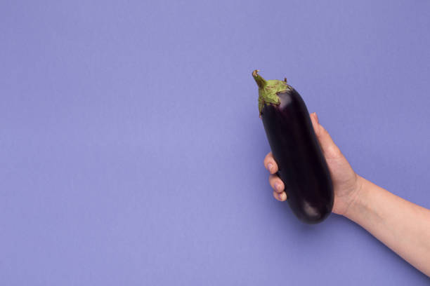 female hand holding fresh eggplant on purple background - melanzane foto e immagini stock