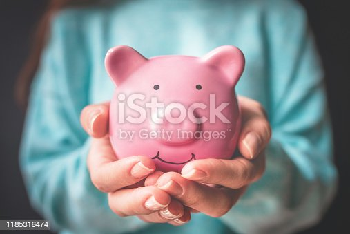 istock Female hand holding piggy bank. Save money and financial investment 1185316474