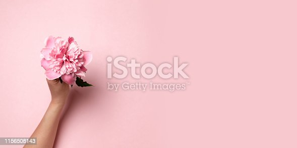 istock Female hand holding pink twig peony flower on pink background. Flat style. 1156508143
