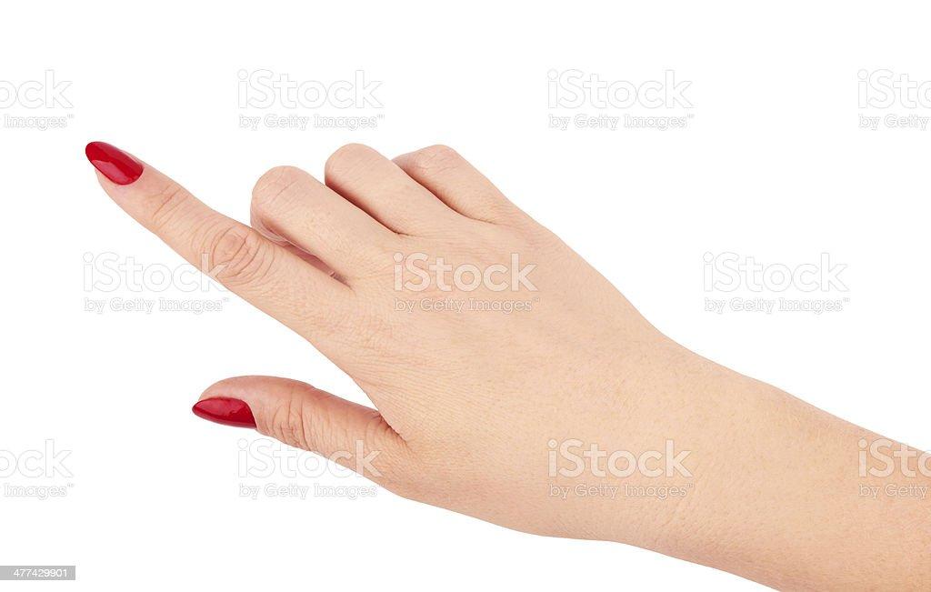 female hand royalty-free stock photo