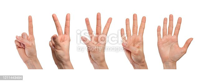 466657402 istock photo Female hand showing set of popular gestures that characterize learning to count. Different position of fingers. Isolated on white background 1211443454