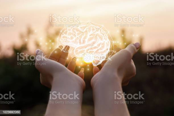 Female hand shows the brain picture id1023692050?b=1&k=6&m=1023692050&s=612x612&h=mrg6m7acyuaddtg74p8zou5d lhchrve3y5p6f1my6g=
