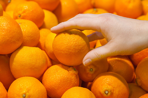 A female hand takes a orange Clementines fruits off the counter in a supermarket