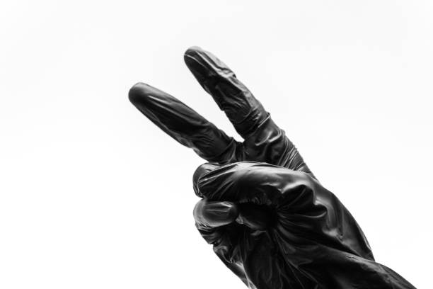 Female hand turned back in black gloves show gestures, signs and symbols isolated on white background. Two fingers to the top and folded in the form of V signifying victory or peace stock photo