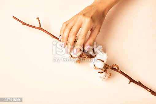 1147741037 istock photo Female hand with a perfect pastel pink manicure holding cotton branch 1257449991