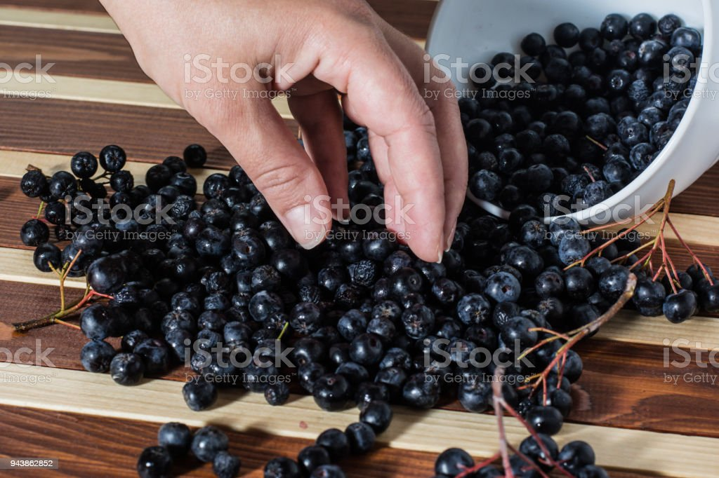 Female hand with aronia on the table stock photo