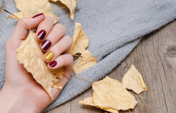 Female hand with dark red nail design stock photo