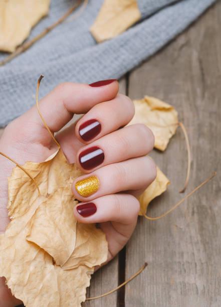 weibliche hand mit dunkelroten nageldesign - herbst nagellack stock-fotos und bilder