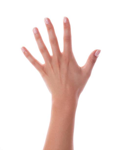 weibliche hand mit frischen painted nägel auf weiß - nägel lackieren stock-fotos und bilder