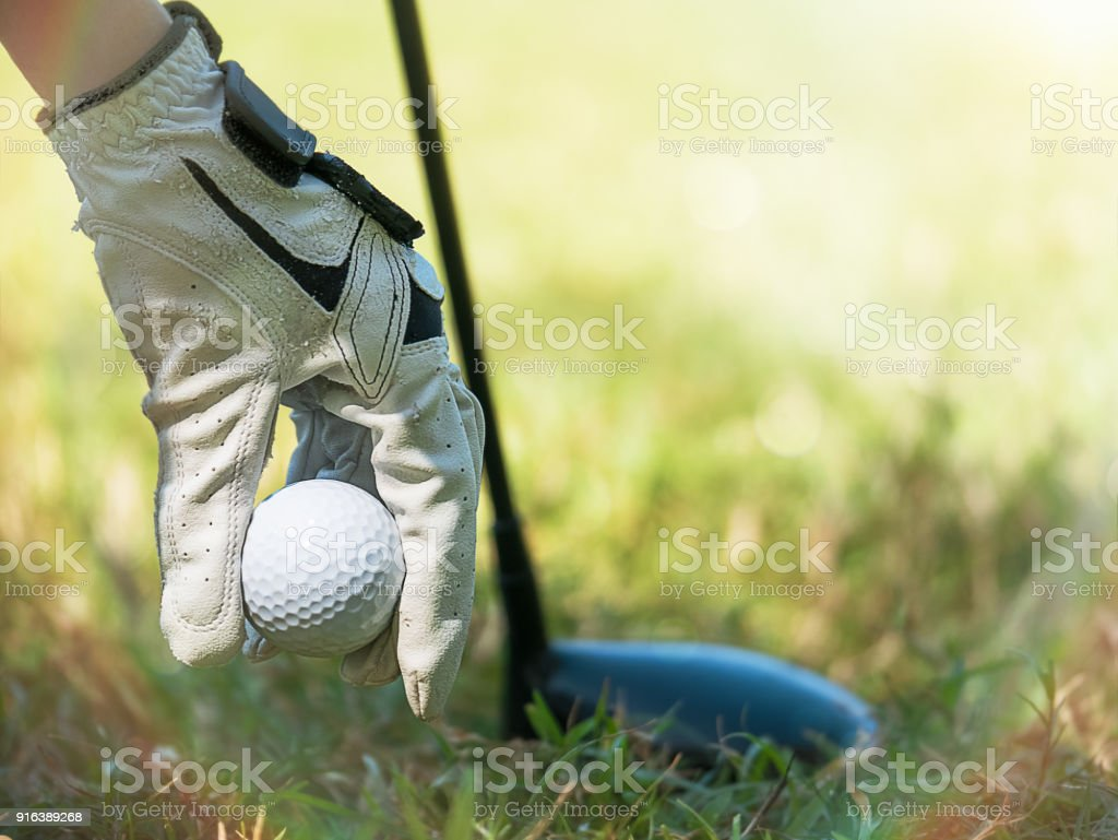 Female hand with golf glove picking up ball from green grass rough...
