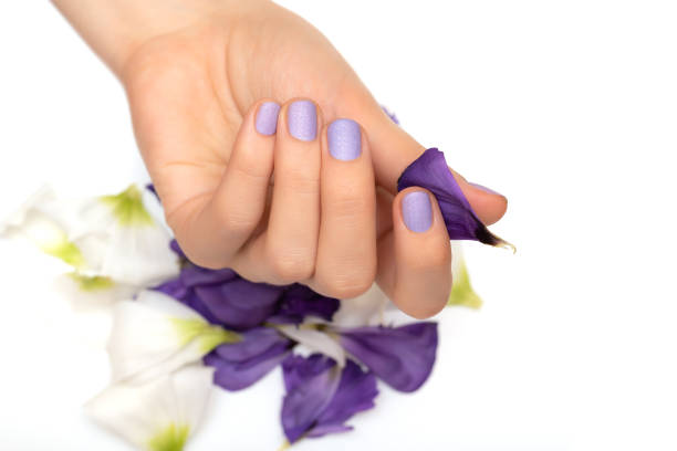 Female hand with purple nail design on white background stock photo