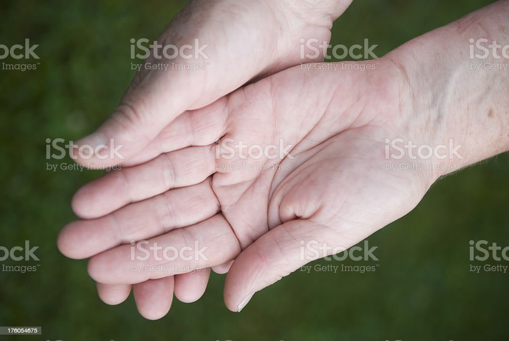 Female hands, caucasian, palms up, selective focus royalty-free stock photo