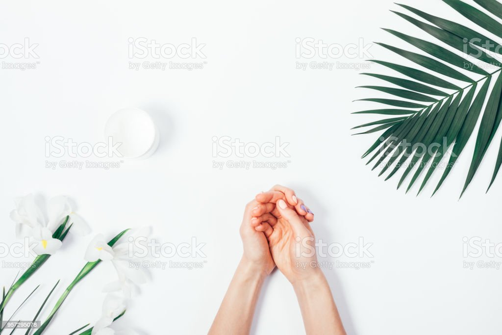 Female hands, cosmetic cream in a jar stock photo