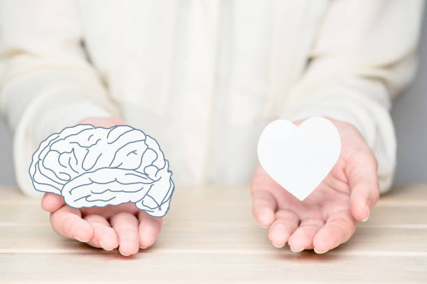 Female hands holding paper cut brain and soul. Conflict between emotions and rational thinking. Balance and equilibrium between mind and heart concept stock photo