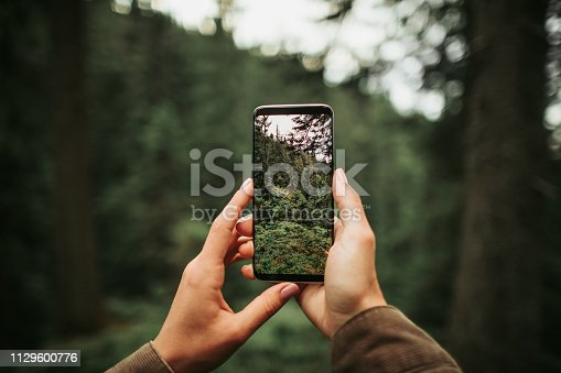 Perfect shot. Close up of mobile phone in arms of young lady isolated on blurred background. Woman taking picture of beautiful wood