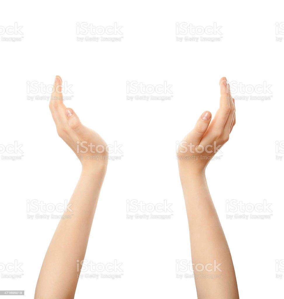female hands holding up something stock photo