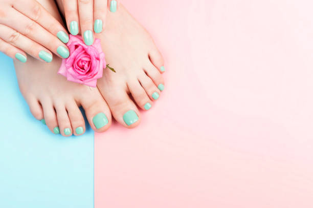 Female hands, legs with manicure and pedicure with flower on a pink, blue background, top view stock photo