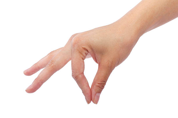 Female Hands Picking Up Something on a White Background stock photo