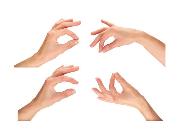weibliche hände - pflücken stock-fotos und bilder