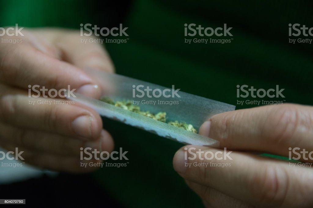Female hands rolling a marijuana cigars stock photo