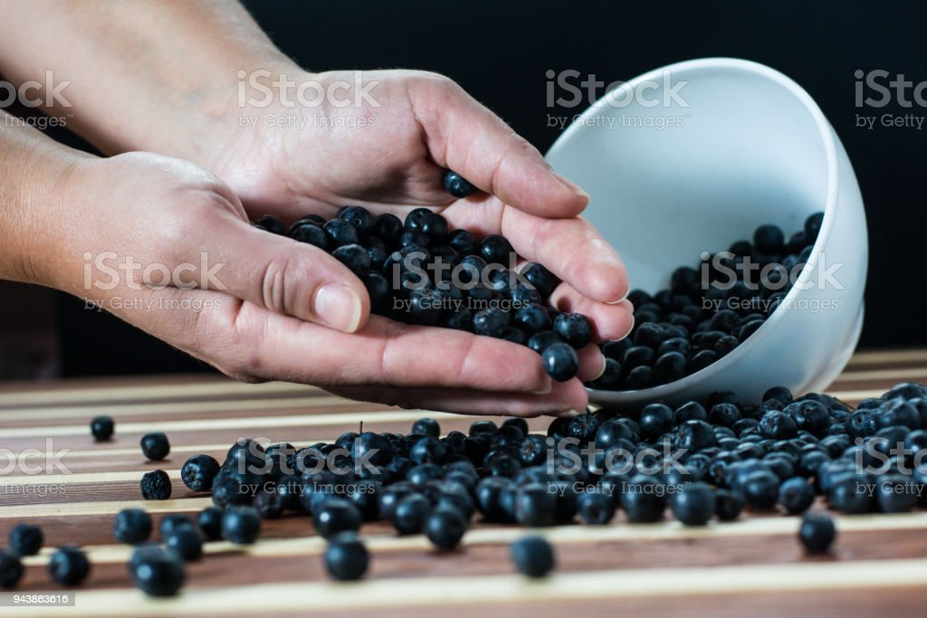 Female hands with aronia on the table stock photo