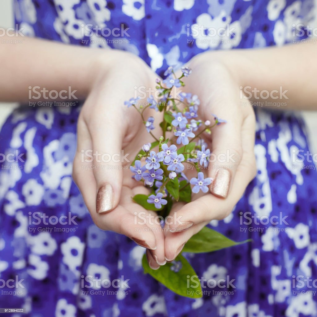 Female Hands With Blue Flowers The Girl In The Flower Dress Blue