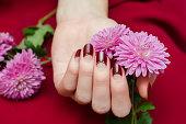 暗い赤爪のデザインで女性の手。
