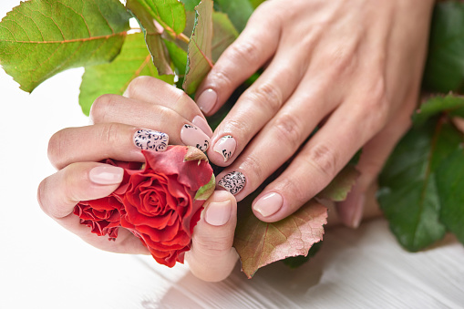 istock Female hands with gentle manicure. 979613114