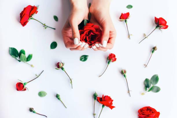 Female hands with white manicure and many red roses picture id1248161432?b=1&k=6&m=1248161432&s=612x612&w=0&h=h4i v1kluo7gtmz2c u ad3kjkzdzbk1rjecoxupt 8=