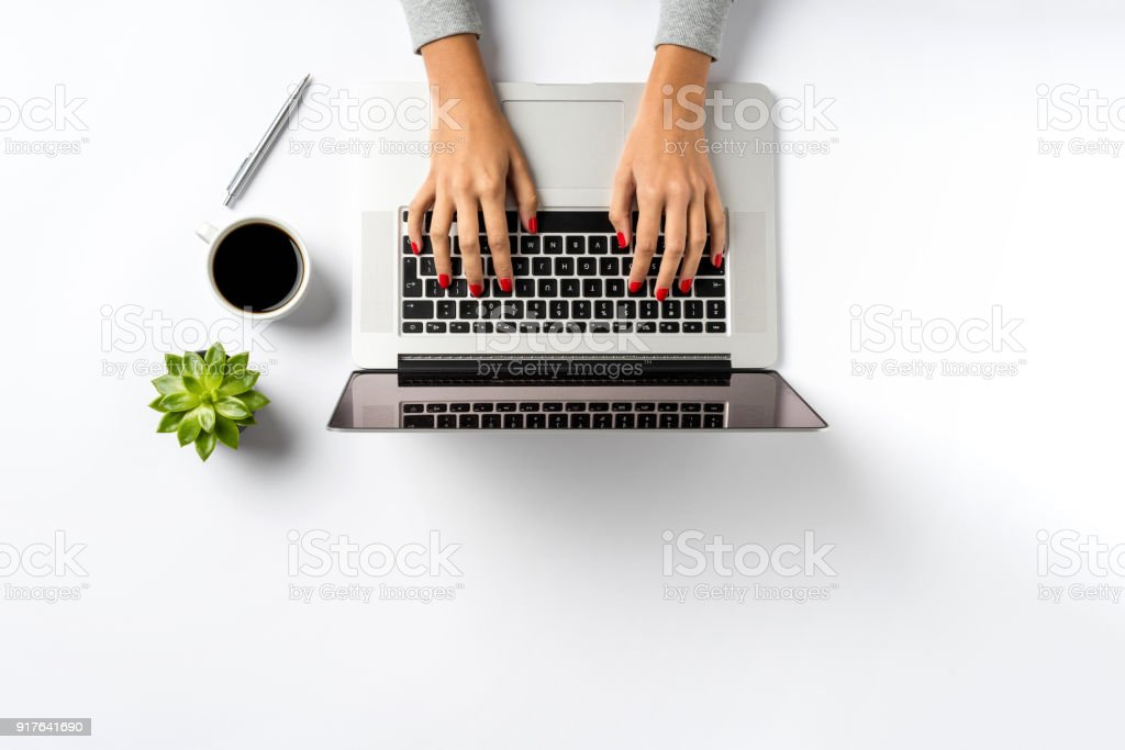 Female hands working on modern laptop. stock photo