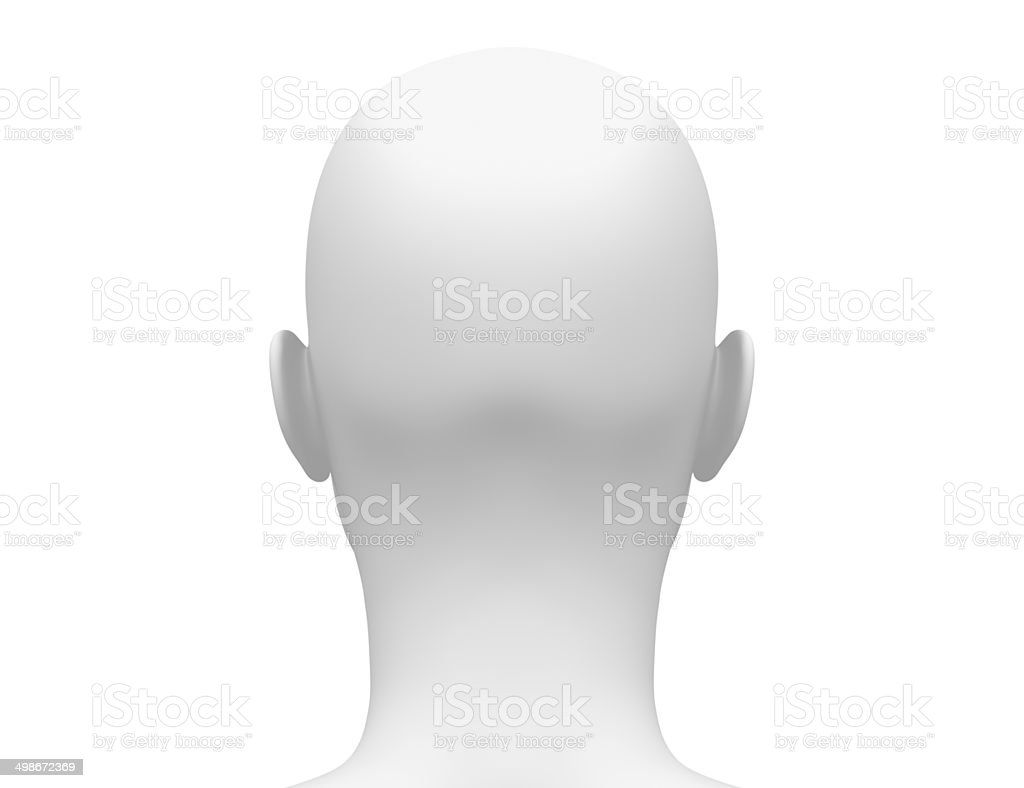 Female Head Muscles Anatomy Back View Stock Photo & More Pictures of ...
