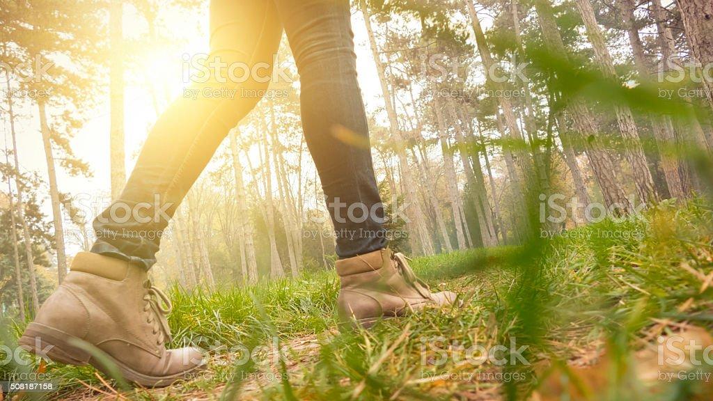 Female hiker stock photo