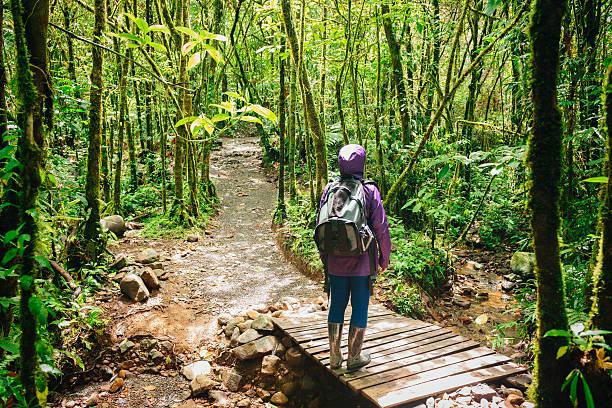 女性ハイカーストップ検索するコスタリカの熱帯雨林の木 - 自然旅行 ストックフォトと画像