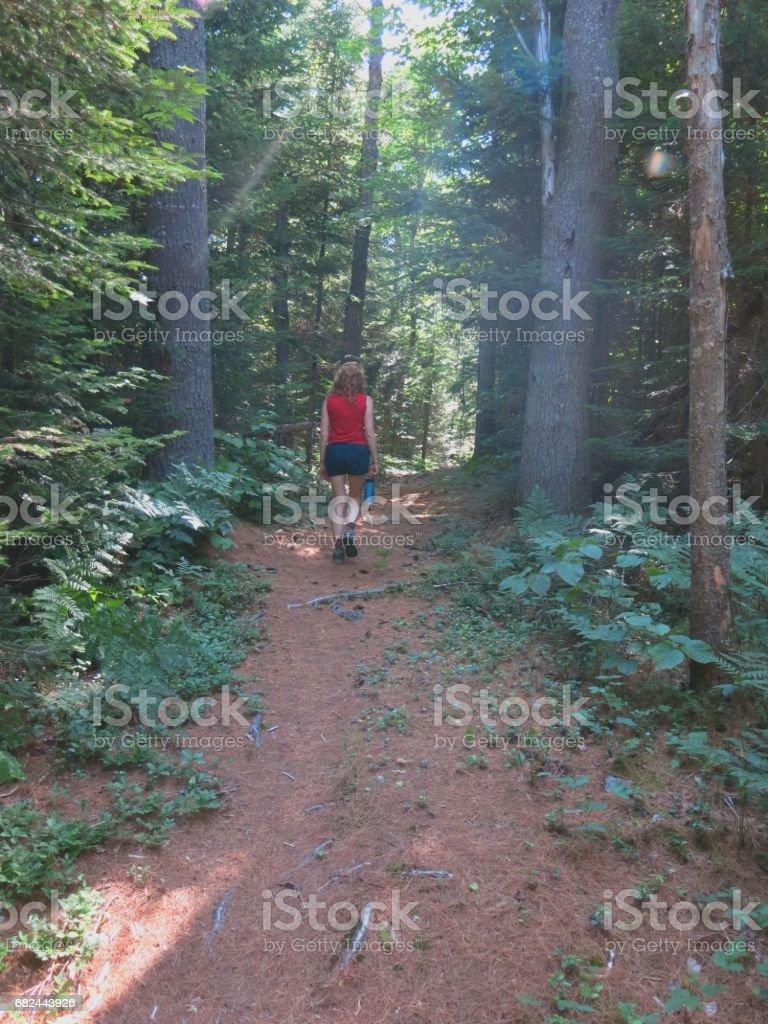 Female Hiker Walking Through Woods, Adirondack Mountains, New York State royalty-free stock photo