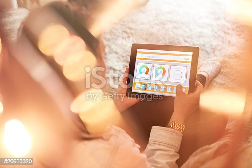 istock Female home owner checking energy consumption 520623320