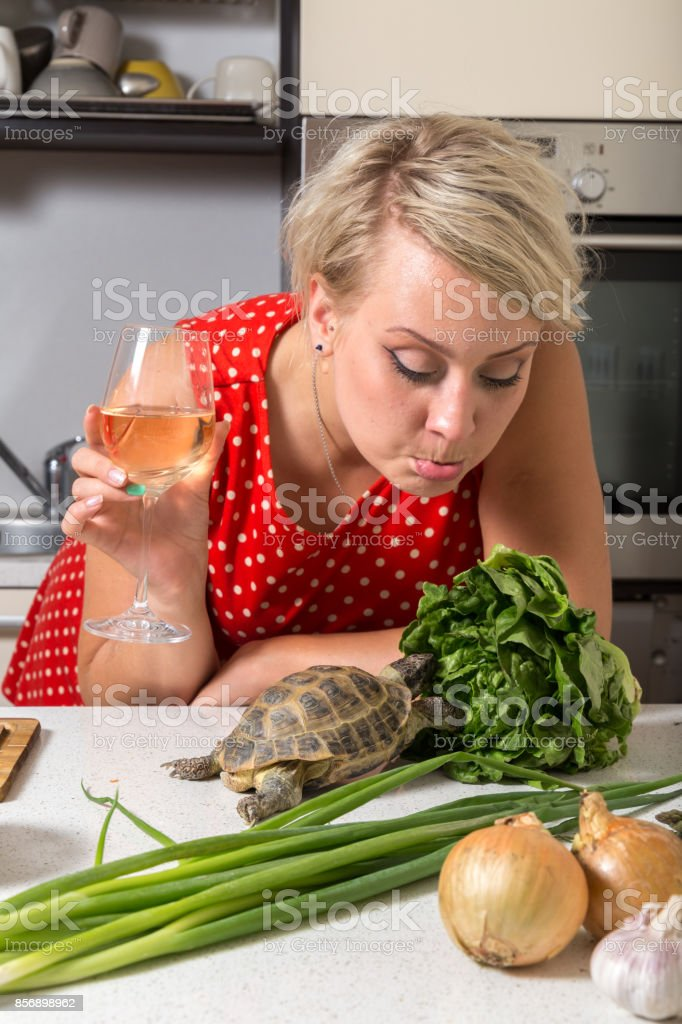 Female is surprised on tortoise who is eating salad stock photo